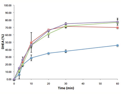 stress assisted polymer dissolution rate
