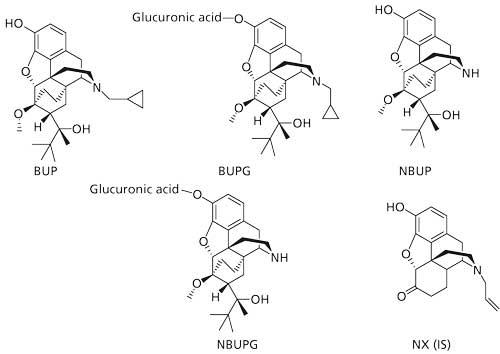 Simultaneous Quantitation of Buprenorphine and Its