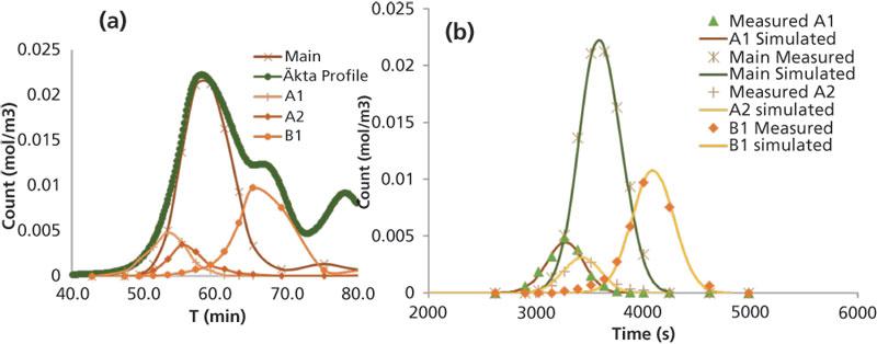 Mechanistic Modeling Of Preparative Ion Exchange Chromatography