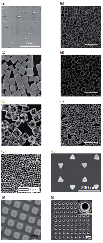 surface enhanced raman spectroscopy pdf